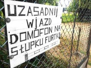 kluby pilkarskie warszawa olimpia uzasadnij skarby miasta